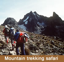 TANZANIA MOUNTAIN TREKKING